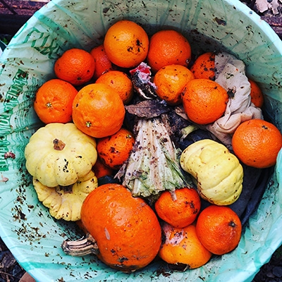 The Compost Queens Put Waste to Work
